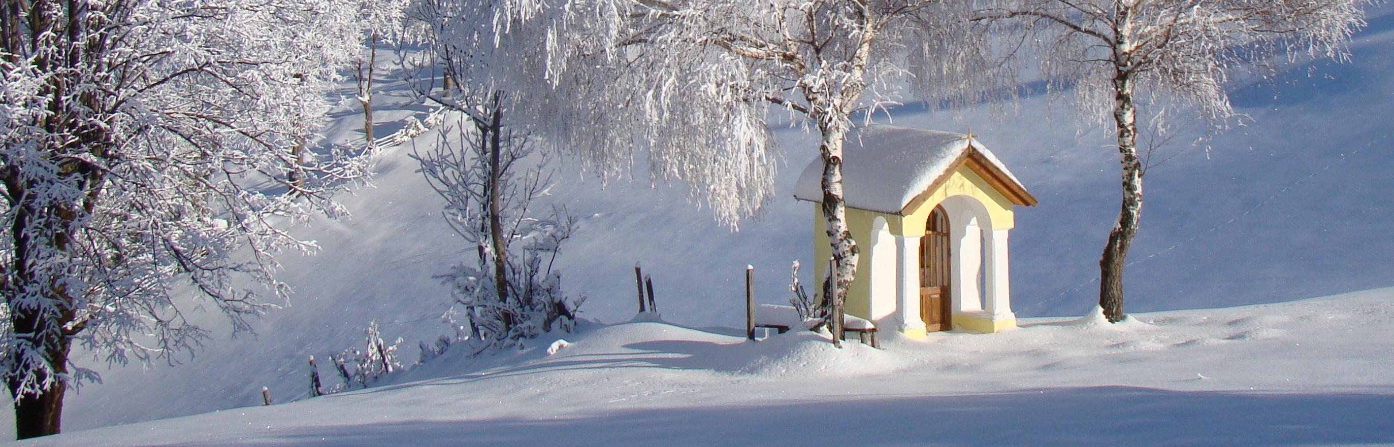 2010-01-27-fisch-04