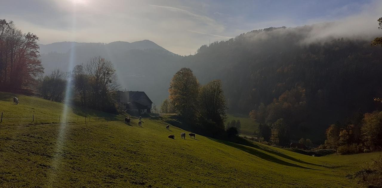 "Laubenbachmühle ""Goasreith"" Simone Gabauer Fotowettbewerb Frankenfels"